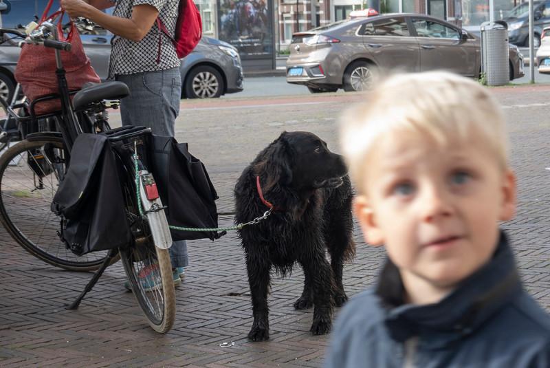 gister, Haarlemmerplein,