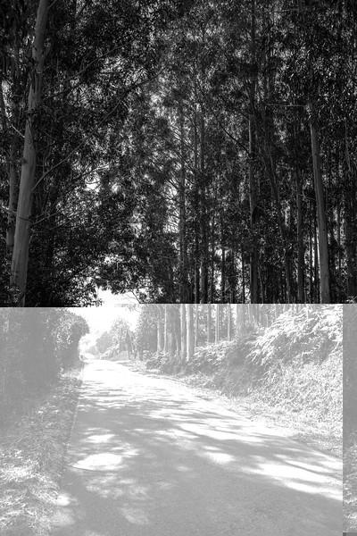 Folgosa - Ribadeo