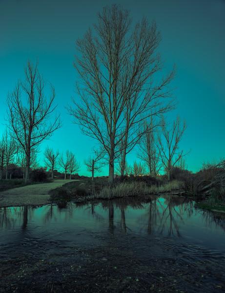 30 de Diciembre de 2014 - Reflejos al anochecer. Arroyo de Tejada. Tres Cantos
