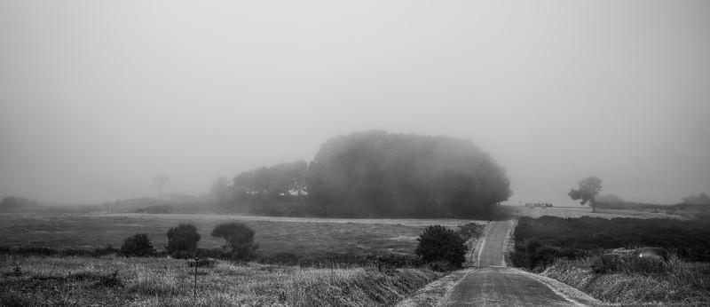 Niebla - Ribadeo