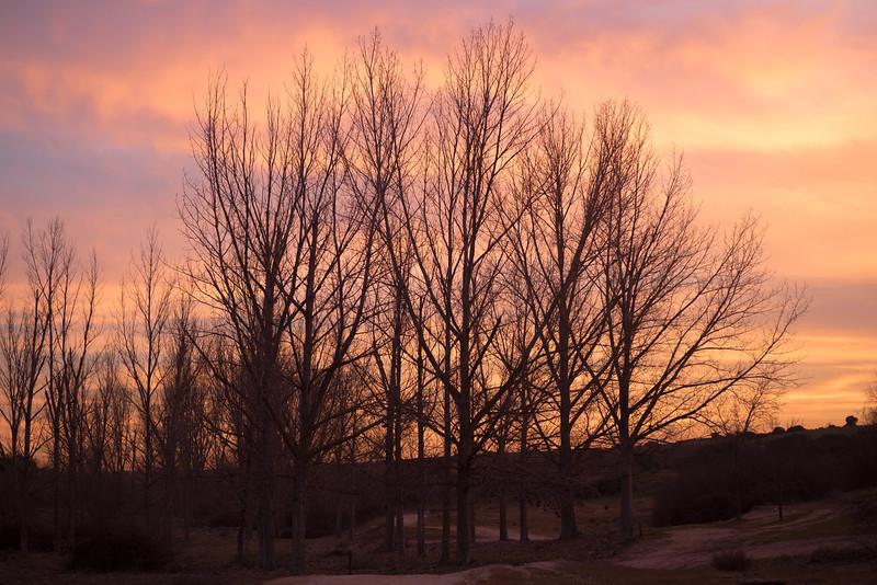 27 de Enero de 2015 - Dios aconseja, pero no obliga. Arroyo de Tejada, Tres Cantos