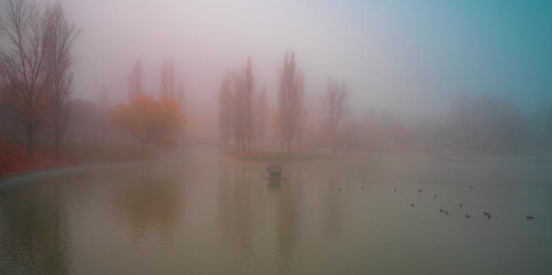 Niebla de Otoño