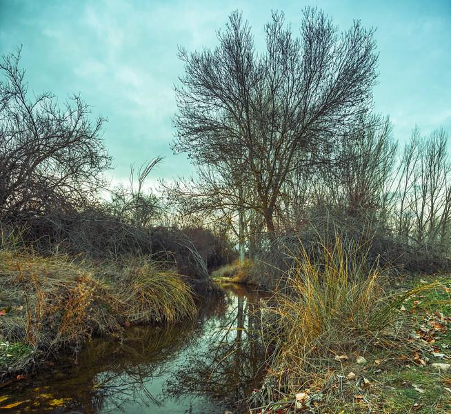 24 de Abril de 2015 - El recodo de los patos en el Arroyo Tejada. ValdelosHielos. Tres Cantos