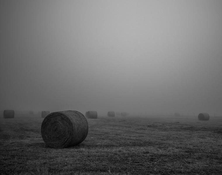 Niebla en los campos II - Ribadeo