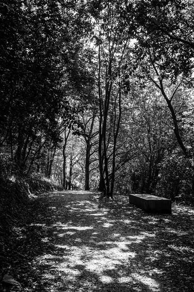 Paseo de Las Aceñas - Ribadeo