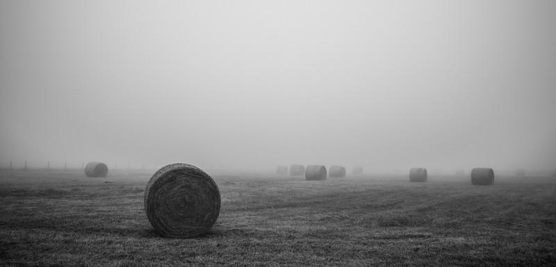 Niebla en los campos - Ribadeo