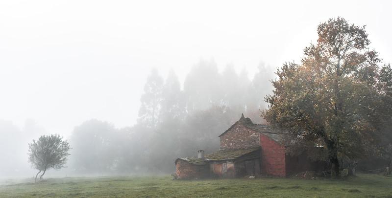 Camino de Santiago granja en la niebla. Baamonde