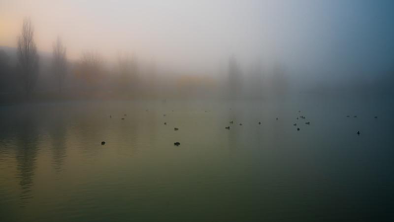 El lago central entre niebla
