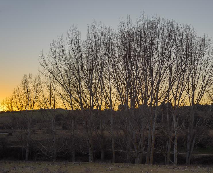 28 de Marzo de 2015 - Las últimas luces del invierno. ValdelosHielos. Tres Cantos