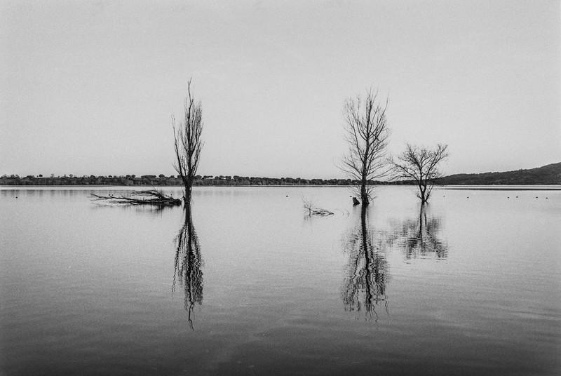 Caminando sobre las aguas