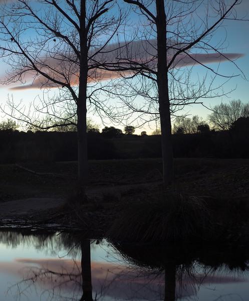 28 de Enero de 2015 - Abrazados en la otra orilla. Arroyo de Tejada. Tres Cantos