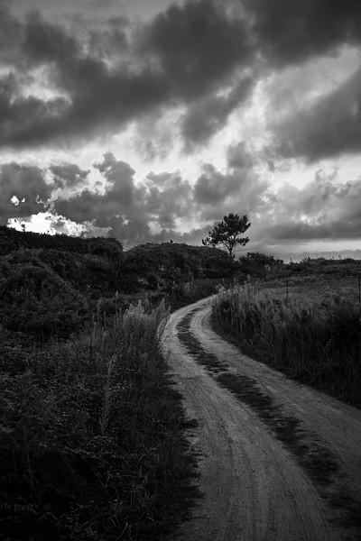Camino en Piñeira - Ribadeo