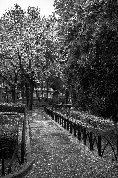 Otoño en el parque - Aranda de Duero