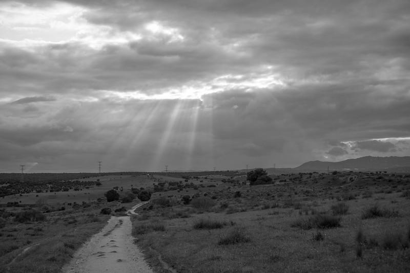 23 de Abril de 2015 - El sendero. ValdelosHielos. Tres Cantos