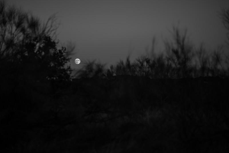 Nuestra Luna - 3Cantos