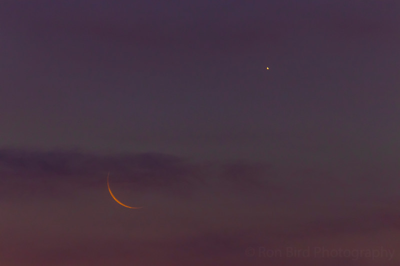 6.19.20 - The two crescents of Luna and Venus this am.