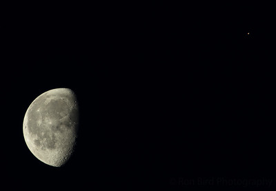 8.9.20 - Luna and Mars visiting this week.