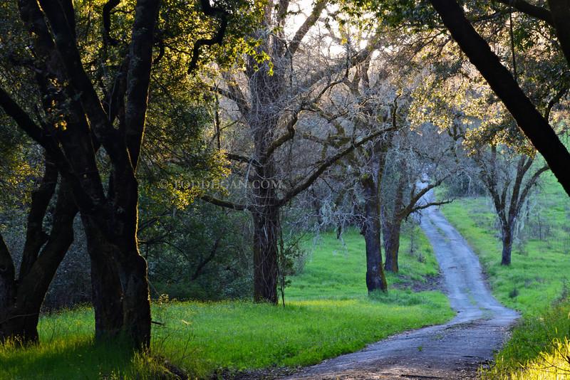 Sonoma County Road 2