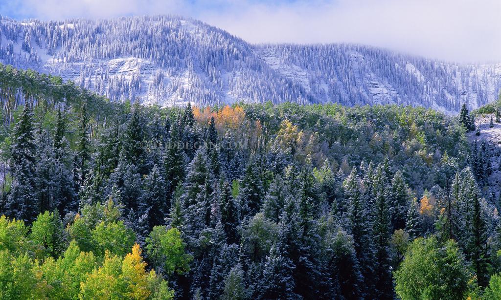 New snow near redstone
