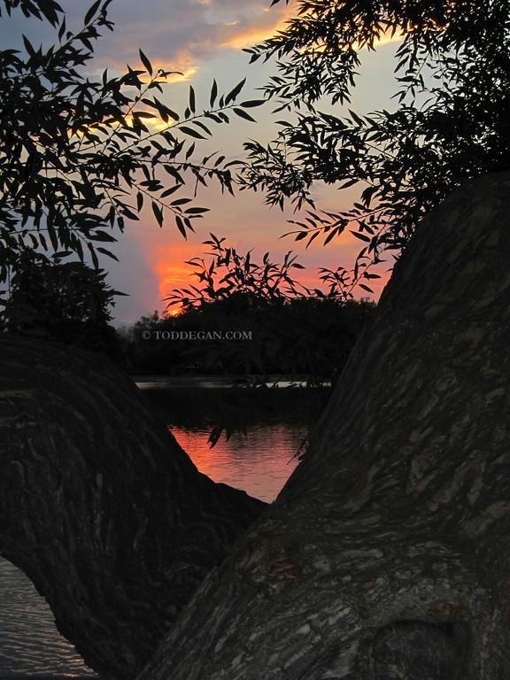 Washington Park Sunset