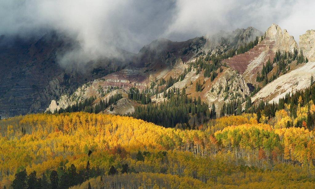Kebler Pass 1694 - Panoramic