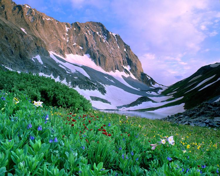 Capitol Peak Wildflowers sunset