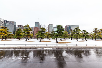 Snow at Imperial Palace