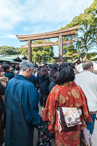 Meiji-Shrine Hatsumode