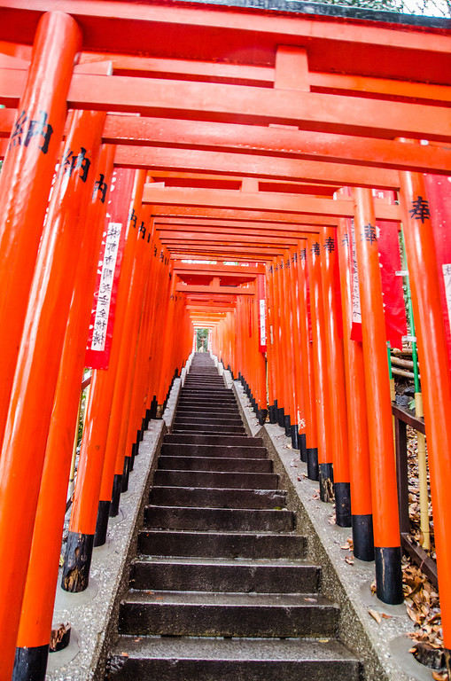 Hie Shrine torii gates - 10 Things To Do in Tokyo