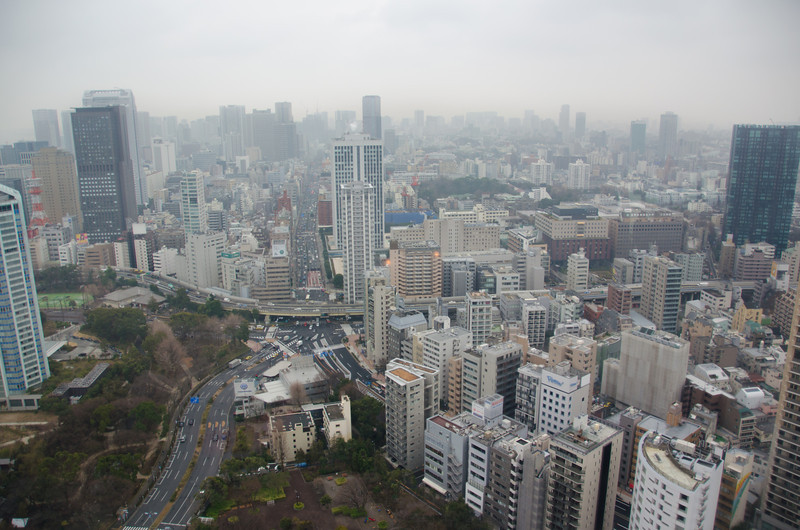 View from Tokyo Tower - 10 Things To Do in Tokyo