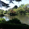 Shinjuku Gyoen National Garden April 20th, 2017