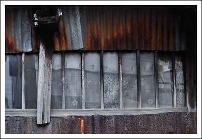 I love the pretty curtains on this old tin house.  Seen on the covered river walkway.