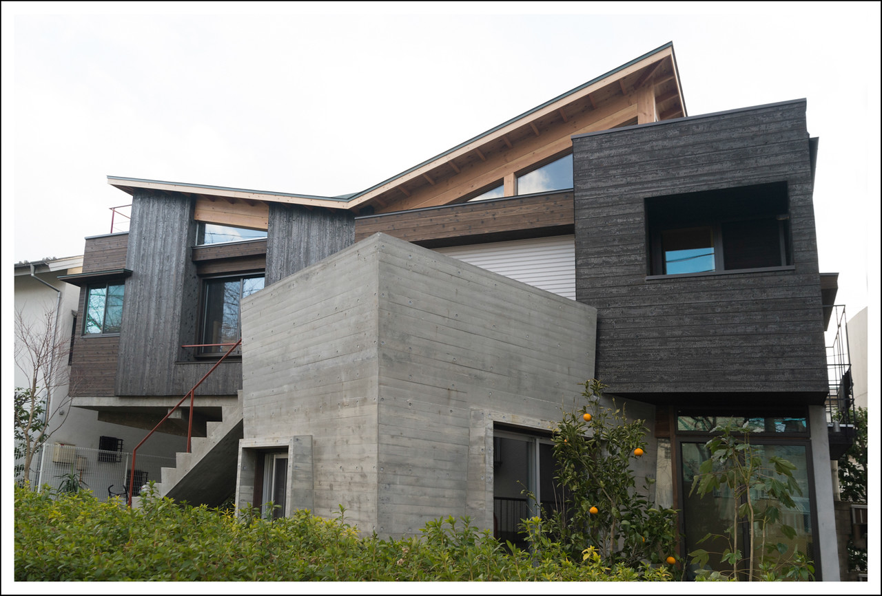 A new ultra-modern house in our neighborhood.  I would love to see the inside.  The black siding is charred wood.