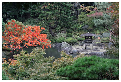 The Japanese garden at Furukawa teien