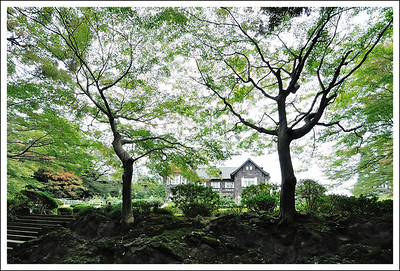 Furukawa Teien seen from the Japanese garden