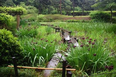Yatsuhashi in Koishikawa Korakuen Gardens, Tokyo