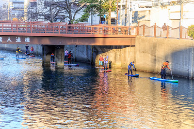A stand up paddle board class exercising in the Okakgwa river 大岡川.