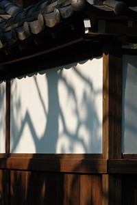 Shadow of a tree on the newly painted temple building at Setagaya Kannon