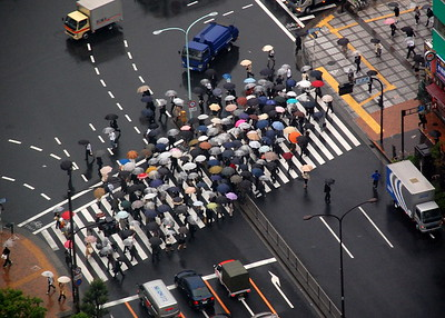A rainy day, not good for sightseeing, feeling lazy in a hotel room. Looking down, there was a stream of umbrellas at a crosswalk, regularly repeated at each green light. Unlike me, they are hurrying to their destination. Busy, busy, busy….such is a life in Tokyo.