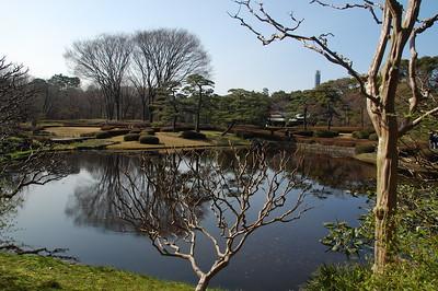 Ninomaru Garden