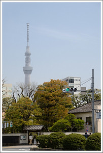 The Sky Tree seen from in front of the sumo stadium.