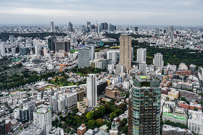 View of Meiji Jingu Stadium and Shinjuku skyscrapers.