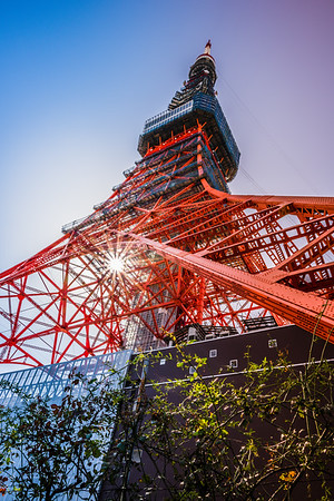Looking up at Tokyo Tower.
