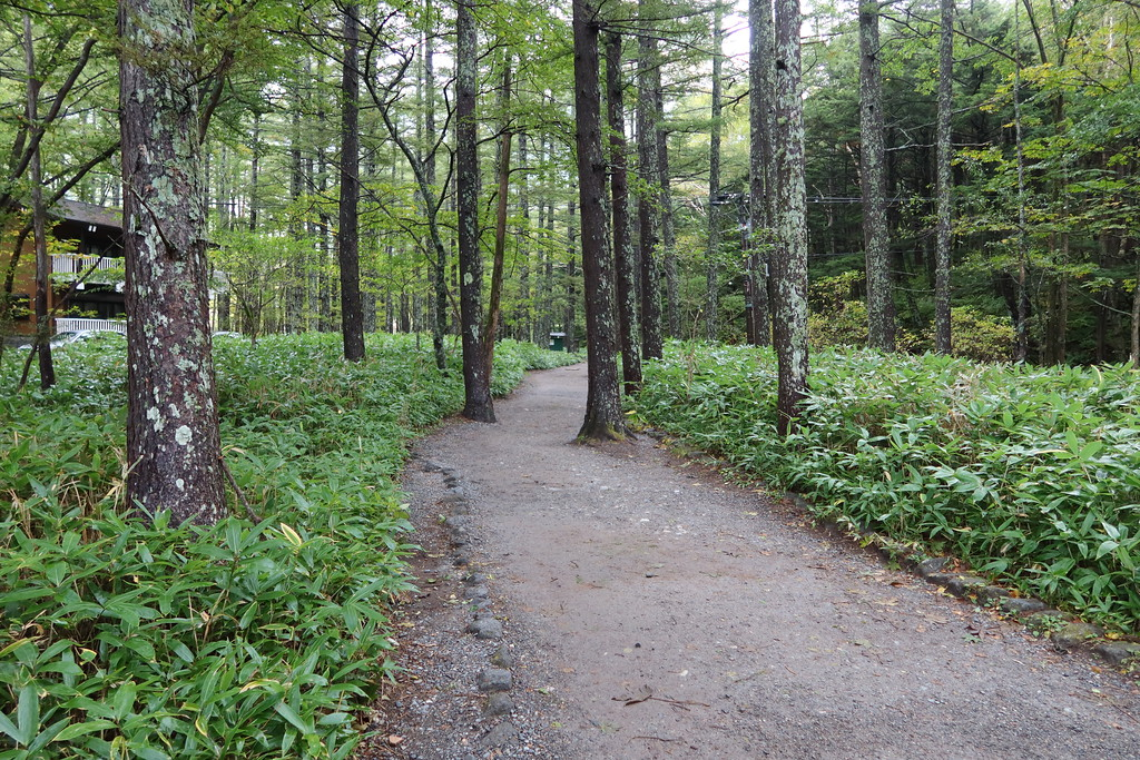 Trail to Kappa-Bashi