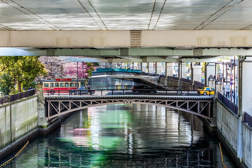 Under the bridge sakura cherry blossoms and sightseeing bus at Yokohama