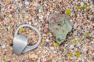Anthropocene Artifact