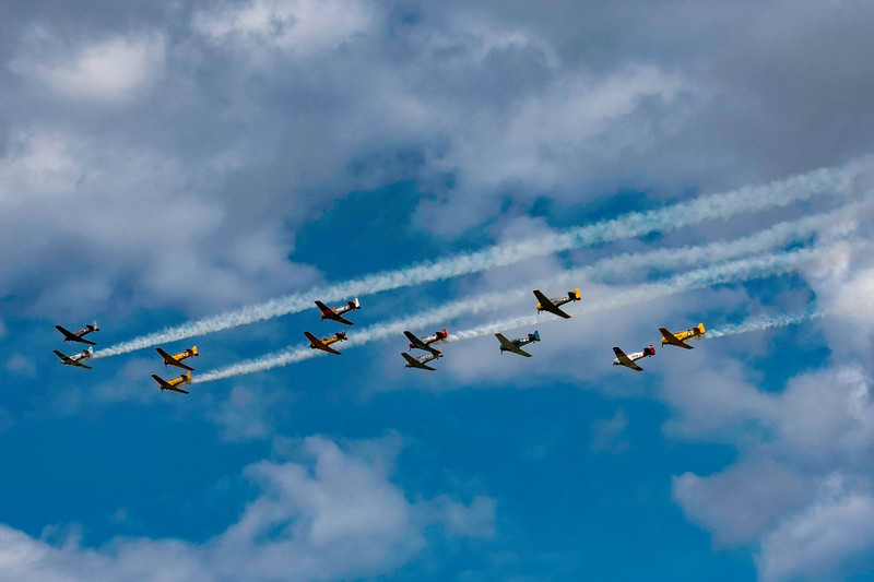_TOM0200 Texans and Harvards