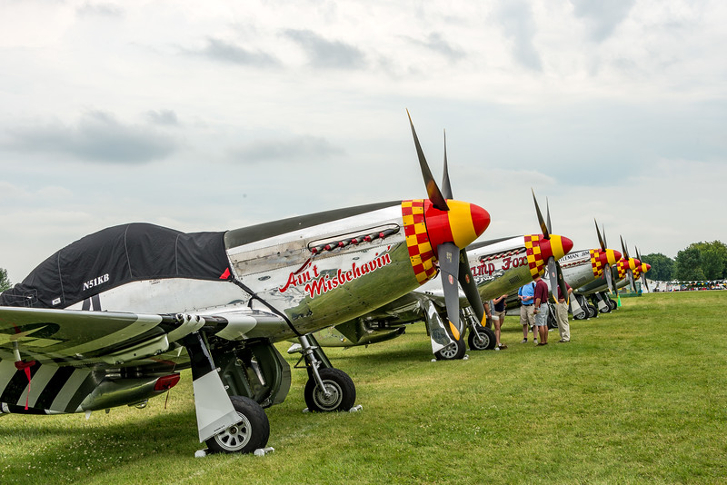 Some of more than a dozen Mustangs at OSH17