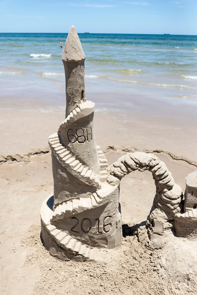 Complete with Princess Rapunzel's turret.