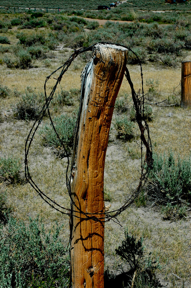 Barbwire on Fence Post  Bodie California July 2005